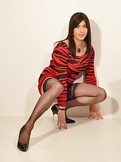 Crossdresser Stockings Pics